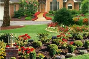 Landscape Design Landscape Designer Greenville Simpsonville Sc
