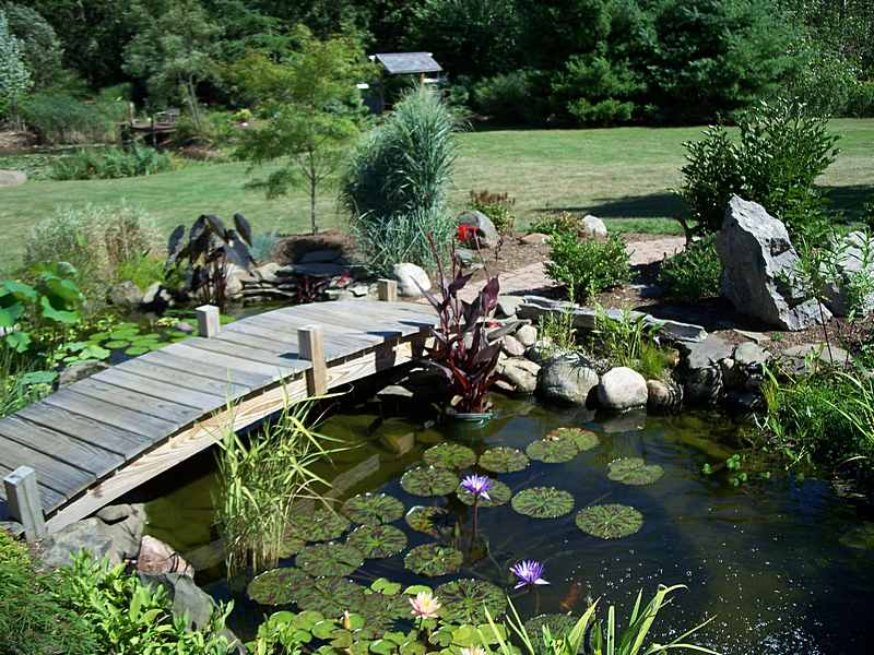 Water Garden Designs Pictures water features Garden Design With Ponds Waterfalls Fountains Water Features Greenville Taylors Sc
