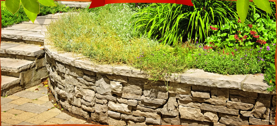 All About Landscaping LLC - Landscaping, Landscaper All About Landscaping Greenville